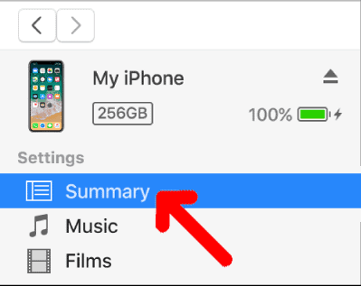 iTunes iPhone Summary