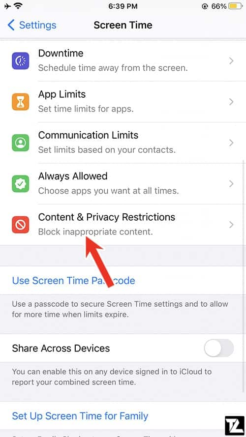 iOS Content & Privacy Restrictions - Screen Time Settings