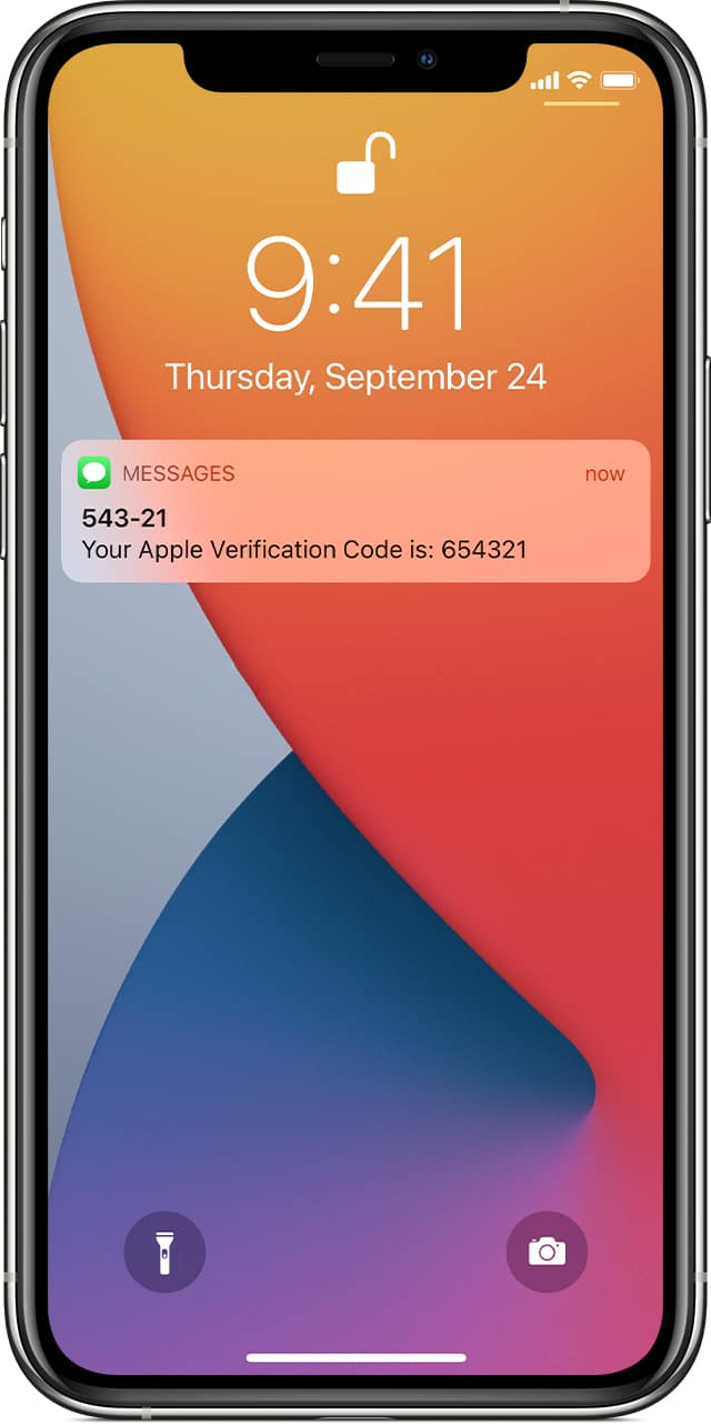 Apple ID Verification Code sent by Text Message SMS