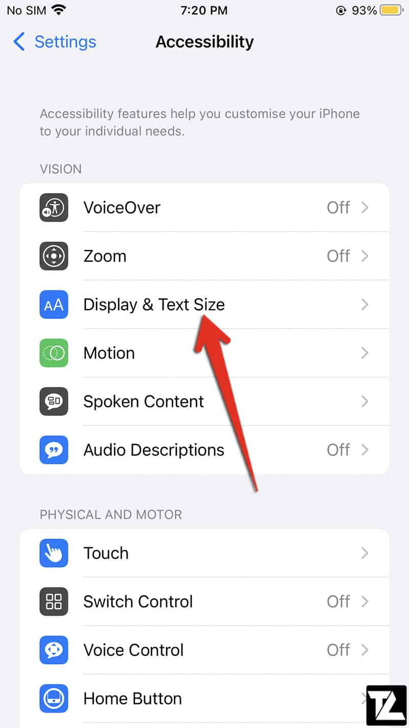 iPhone Display & Text Size Settings
